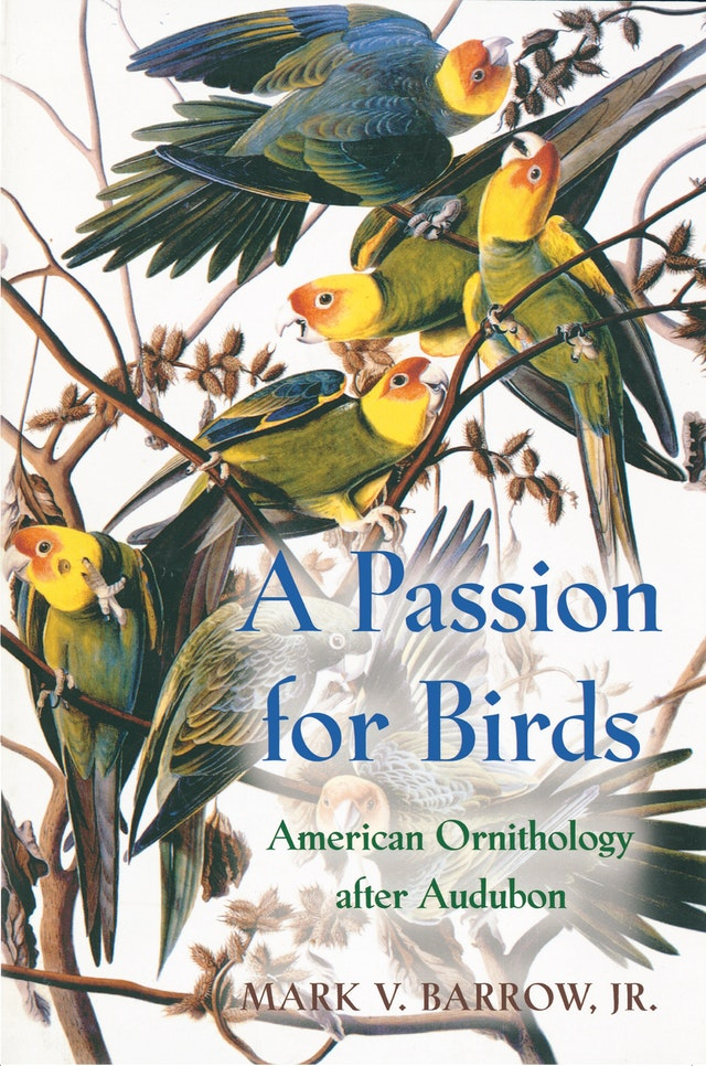 A Passion for Birds