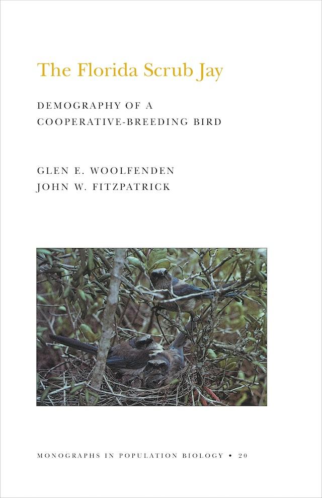 The Florida Scrub Jay (MPB-20), Volume 20