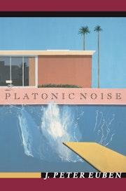Platonic Noise