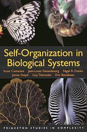 Self-Organization in Biological Systems