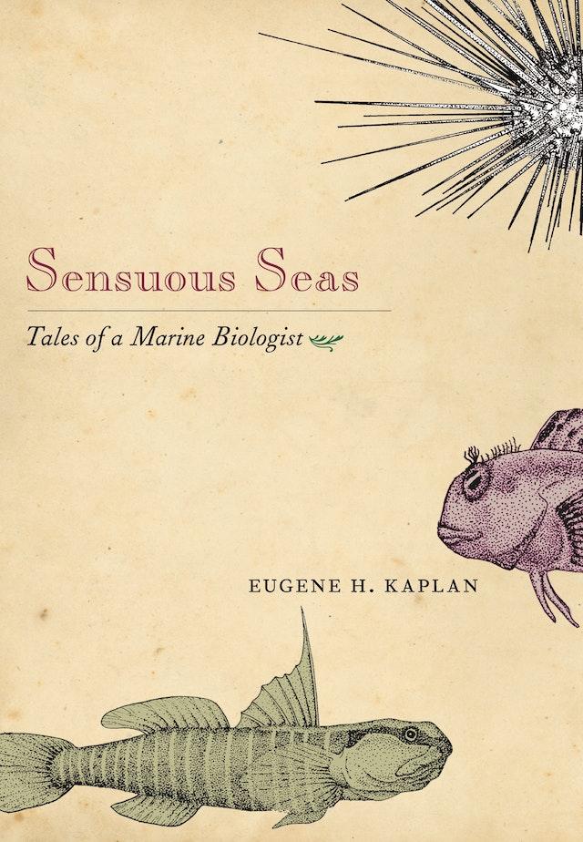 Sensuous Seas