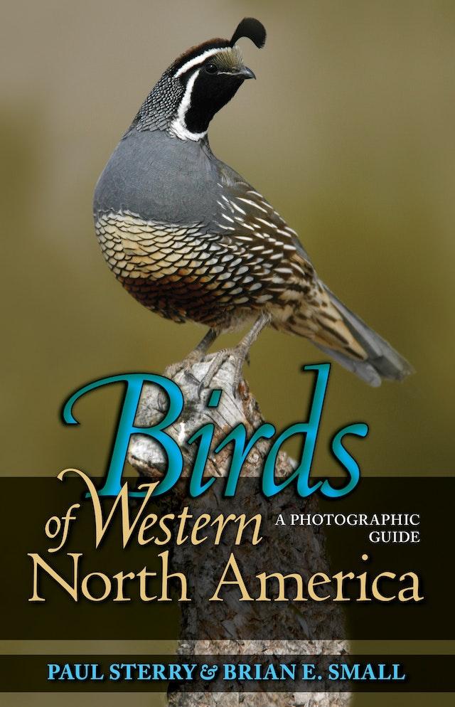Birds of Western North America