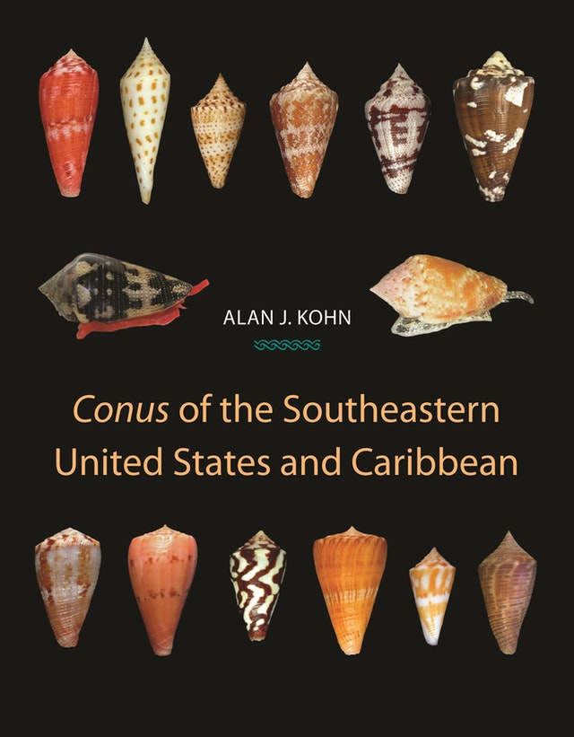<i>Conus</i> of the Southeastern United States and Caribbean