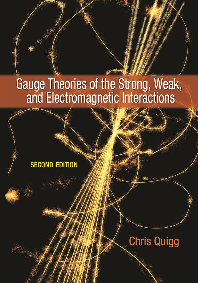 Gauge Theories of the Strong, Weak, and Electromagnetic Interactions