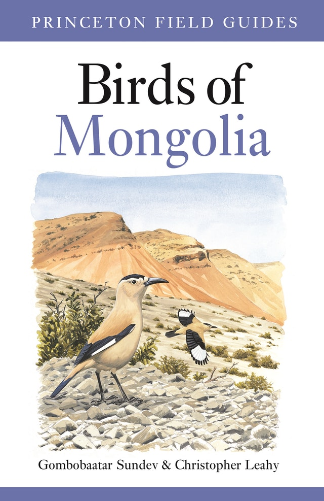 Birds of Mongolia