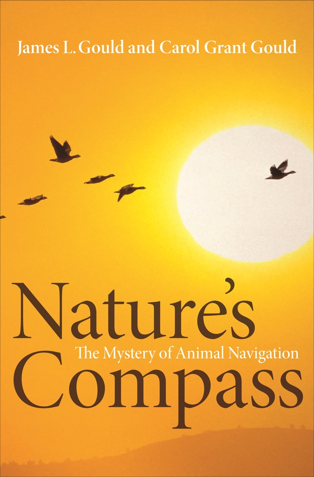 Nature's Compass