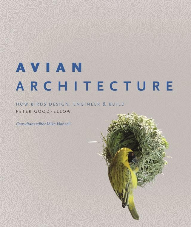 Avian Architecture