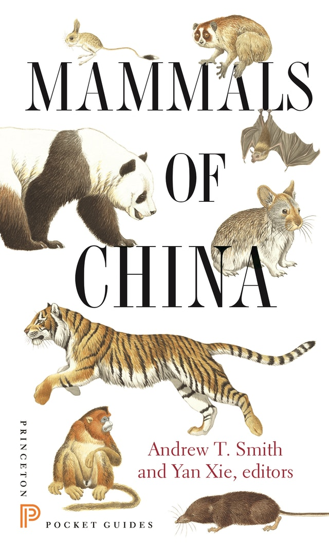 Mammals of China