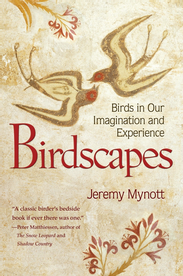 Birdscapes