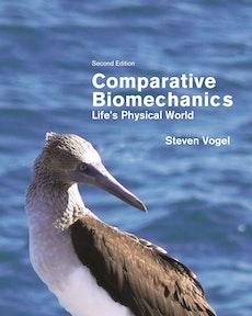 Comparative Biomechanics