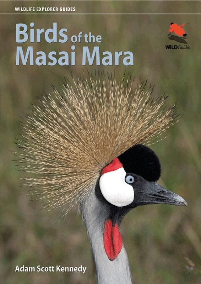 Birds of the Masai Mara
