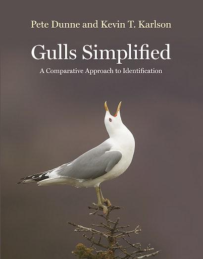Gulls Simplified