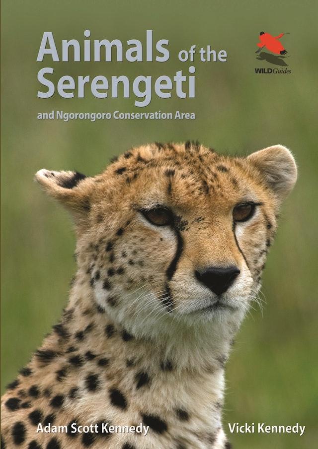 Animals of the Serengeti