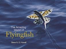 The Amazing World of Flyingfish