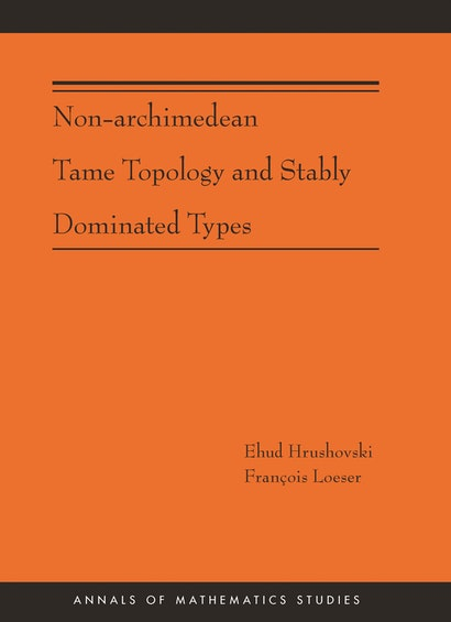 Non-Archimedean Tame Topology and Stably Dominated Types (AM-192)