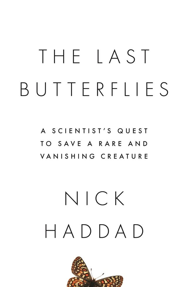 The Last Butterflies
