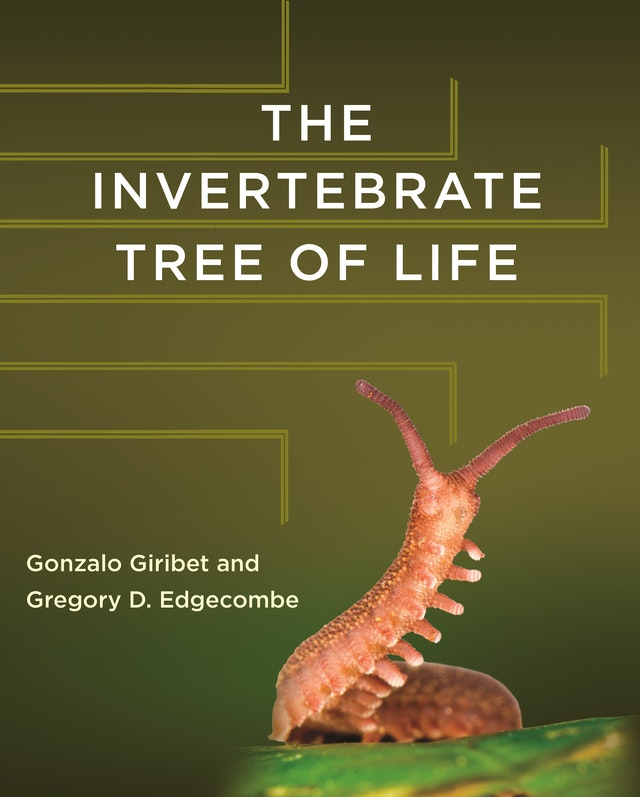 The Invertebrate Tree of Life