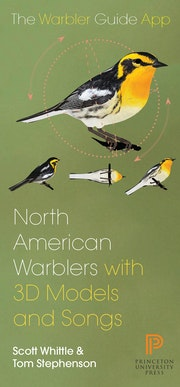 North American Warbler Fold-out Guide
