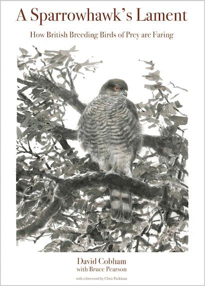 A Sparrowhawk's Lament