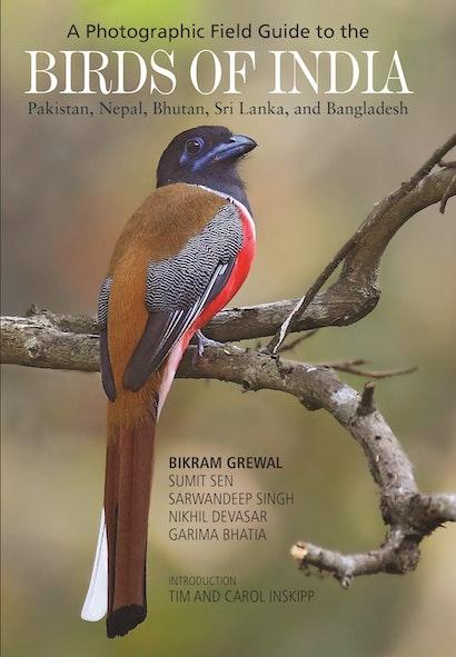 A Photographic Field Guide to the Birds of India, Pakistan, Nepal, Bhutan, Sri Lanka, and Bangladesh
