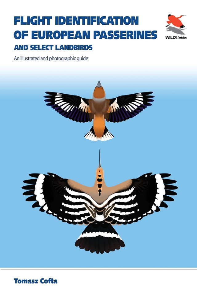 Flight Identification of European Passerines and Select Landbirds