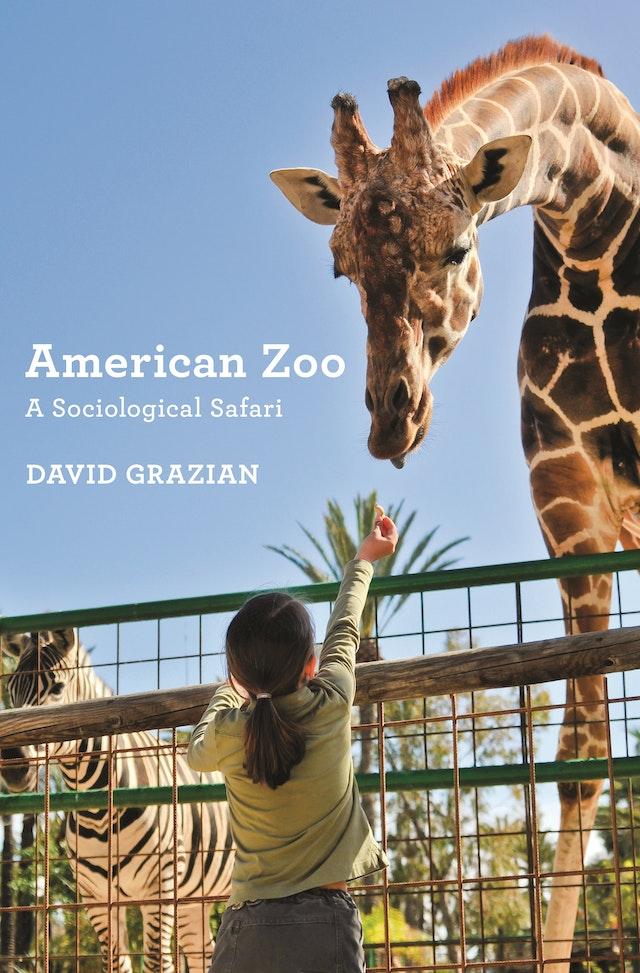 American Zoo