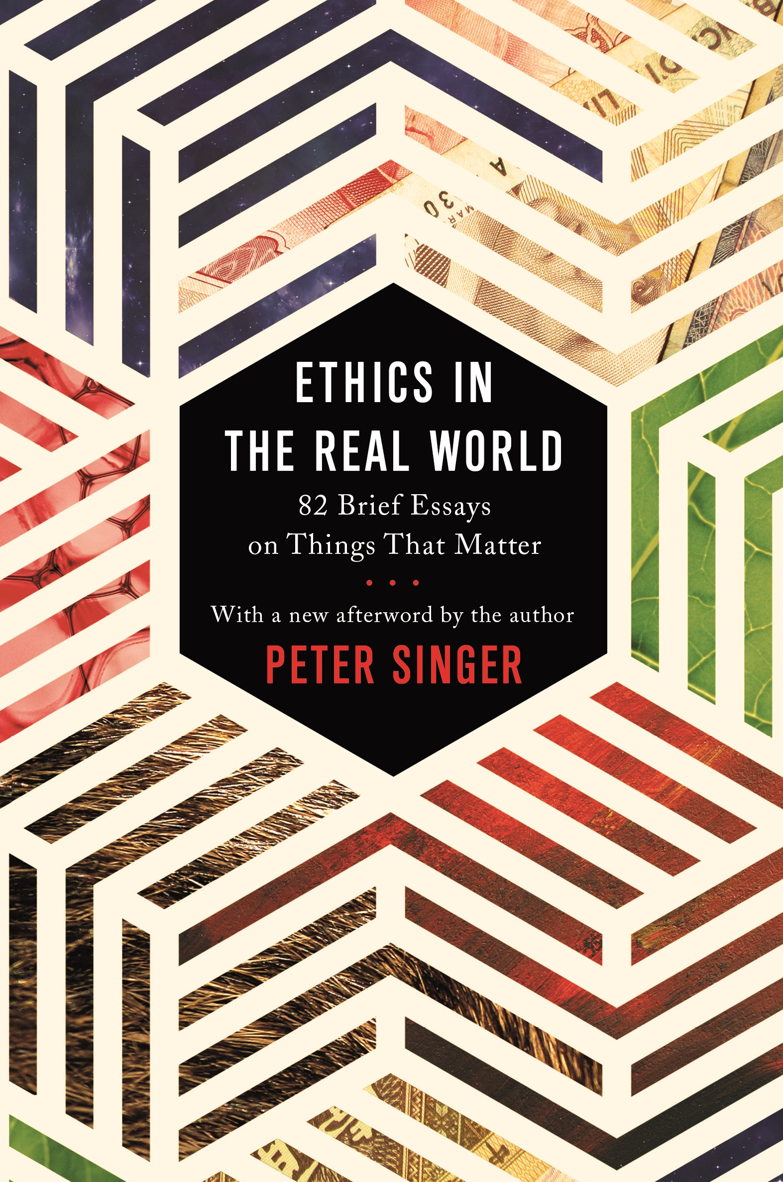 Ethics In The Real World Princeton University Press
