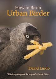 How to Be an Urban Birder