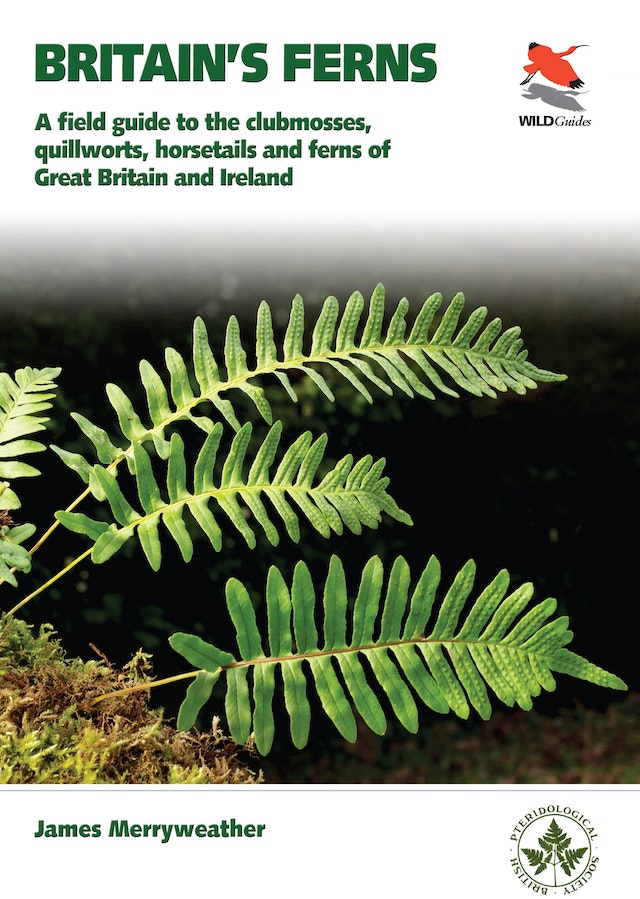 Britain's Ferns