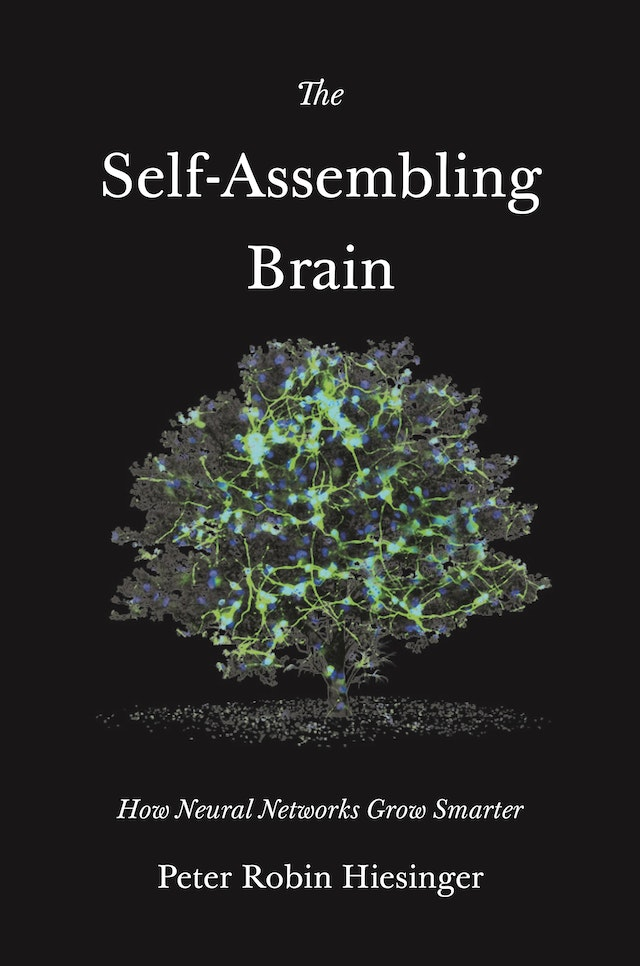 The Self-Assembling Brain