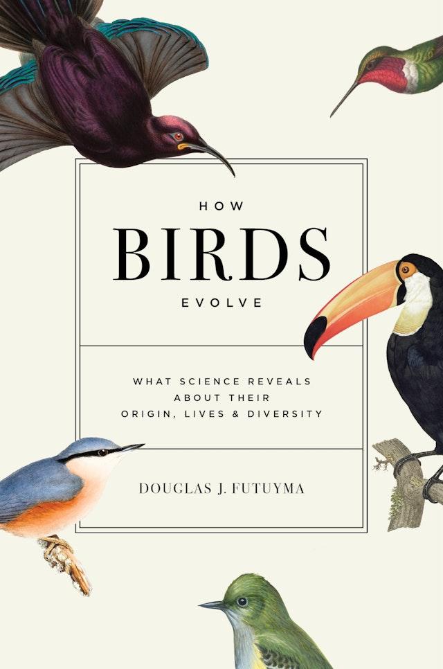 How Birds Evolve