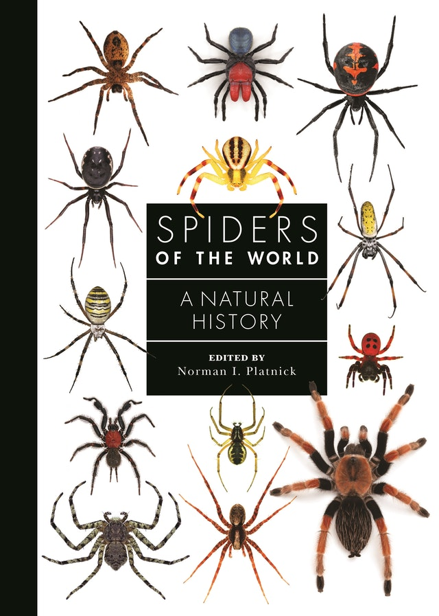 Spiders of the World