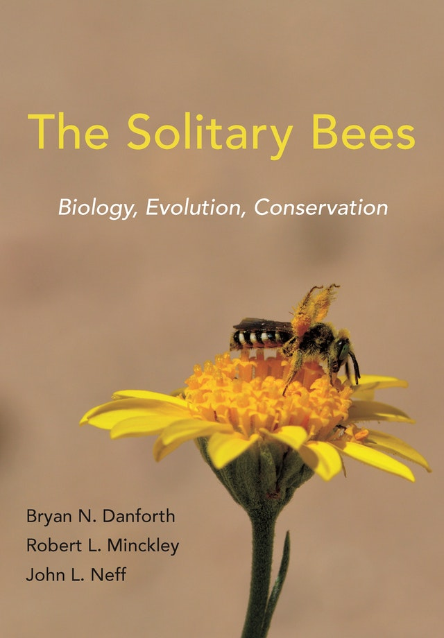 The Solitary Bees