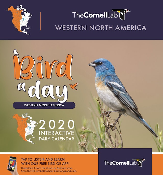 Bird a Day 2020 Interactive Daily Calendar Western North America