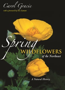 Spring Wildflowers of the Northeast