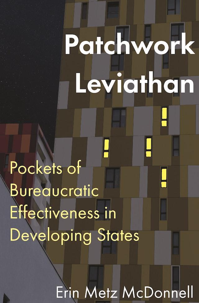 Patchwork Leviathan