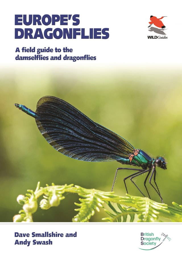 Europe's Dragonflies