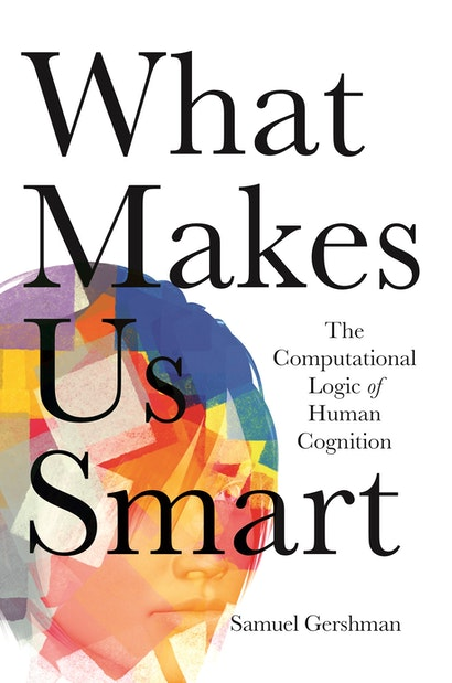 What Makes Us Smart