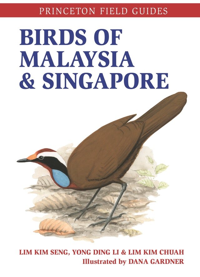Birds of Malaysia and Singapore