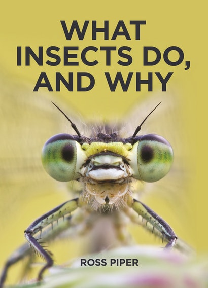 What Insects Do, and Why