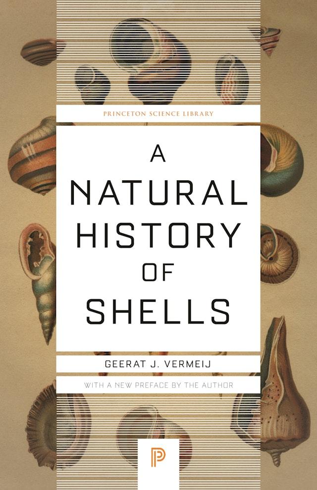 A Natural History of Shells