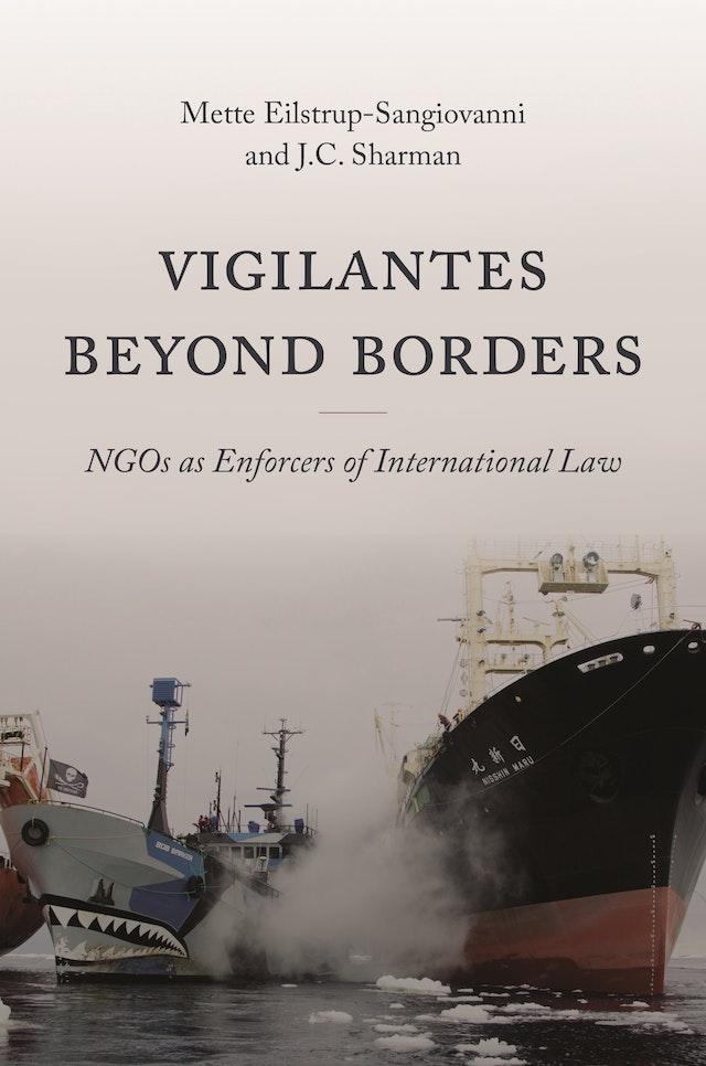 Vigilantes beyond Borders