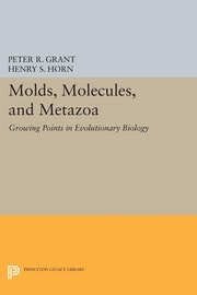 Molds, Molecules, and Metazoa