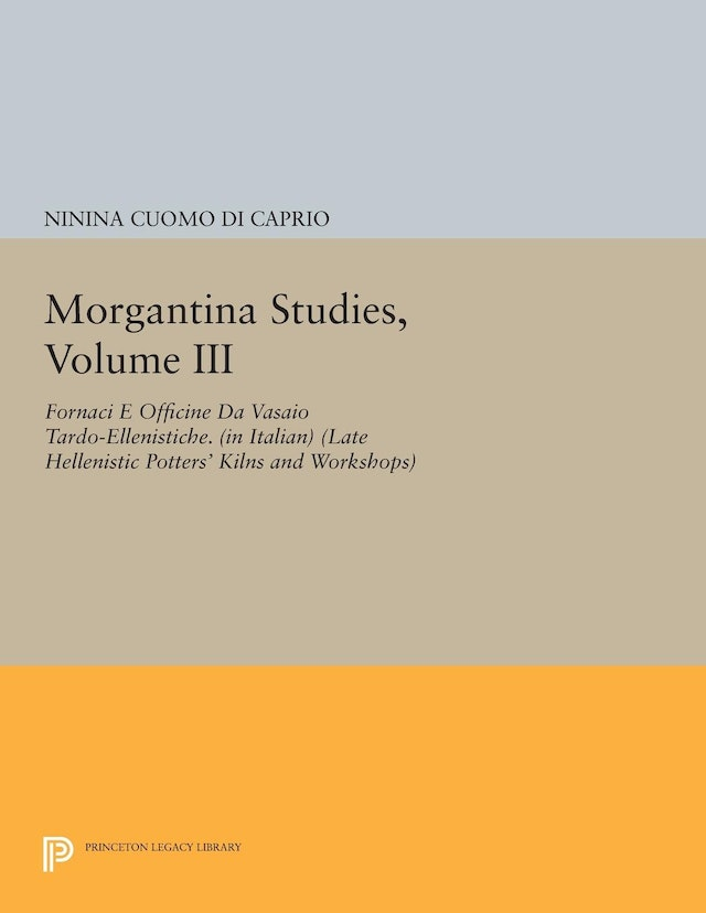 Morgantina Studies, Volume III