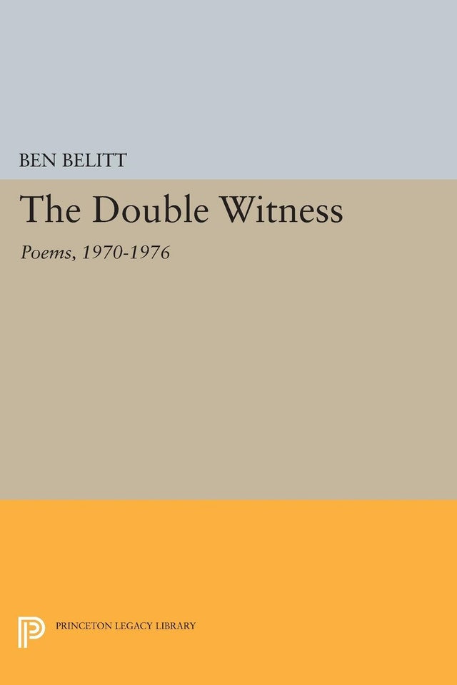 The Double Witness