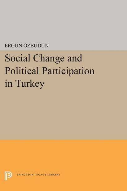 Social Change and Political Participation in Turkey