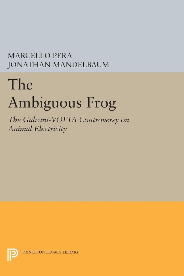 The Ambiguous Frog