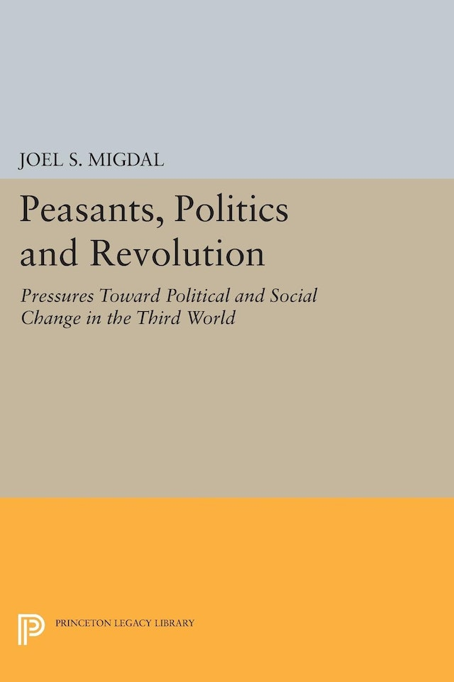 Peasants, Politics and Revolution