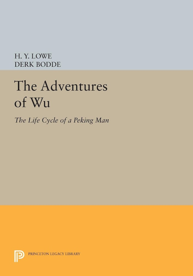 The Adventures of Wu