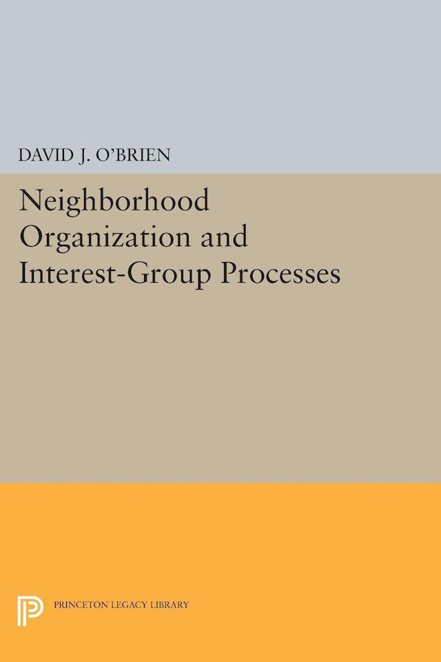 Neighborhood Organization and Interest-Group Processes
